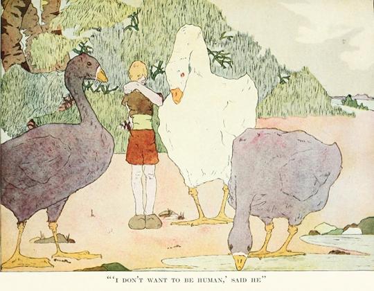 Illustrations de Mary Hamilton Fry présentes dans la traduction anglaise de 1913 du Merveilleux voyage de Nils Holgersson à travers la Suède